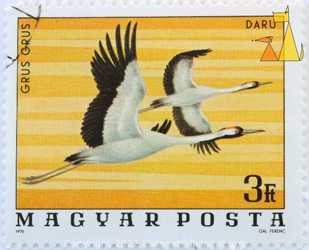 Common cranes in the air, Magyar, Hungary, stamp, bird, Grus grus, 3 Ft, Posta, 1976, Daru, Gal Ferenc