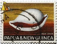 Common egg cowrie, Papua and New Guinea, Papua New Guinea, stamp, shell, Ovula ovum, 1 c