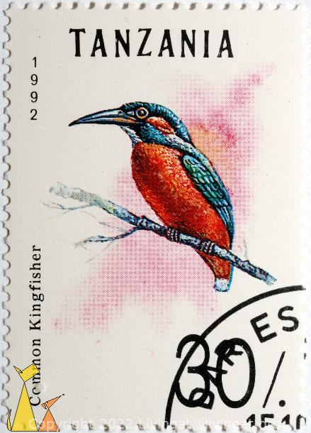 Common kingfisher, Tanzania, stamp, kingfisher, bird, Common kingfisher, Dares, 1992, 30, Alcedo atthis