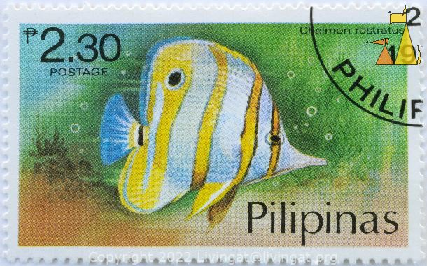Copper-banded butterflyfish, Pilipinas, Philippines, stamp, fish, 2.30 p, Pesos, postage, Chelmon rostrarus, Chelmon rostratus