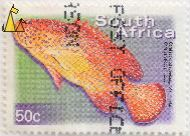 Coral Rockcod, South Africa, stamp, fish, Chris van Rooyen, 2000, 50 c, Cephalopholis miniata