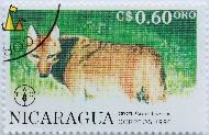 Coyote, Nicaragua, stamp, mammal, FAO, Fiat Panis, correos, 1990, C$ 0.60 Oro, Coyote, Canis latrans