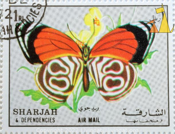 Cramer's Eighty-eight, Sharjah and Dependencies, Sharjah, stamp, air mail, insect, butterfly, Diaethria clymena, 1 Rl