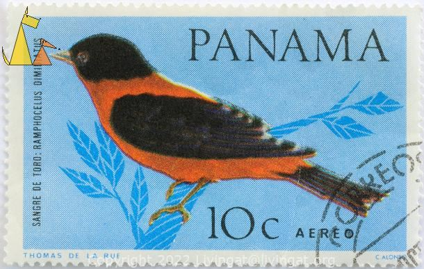 Crimson-backed Tanager, Panama, stamp, bird, Thomas de la Rue, C Alonso, 10 c, Aereo, Sangre de Toro, Ramphocelus dimidiatus