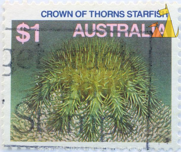 Crown-of-thorns starfish, Australia, stamp, starfish, $1, Acanthaster planci