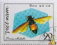 Cuckoo Bee, Vietnam, stamp, insect, bee, 20 xu, Ong bo ve, Buu chinh, Thyreus decorus
