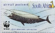 Cuvier's Beaked Whale, South Africa, stamp, fish, whale, airmail, postcard, wwf, panda, Ziphius cavirostris
