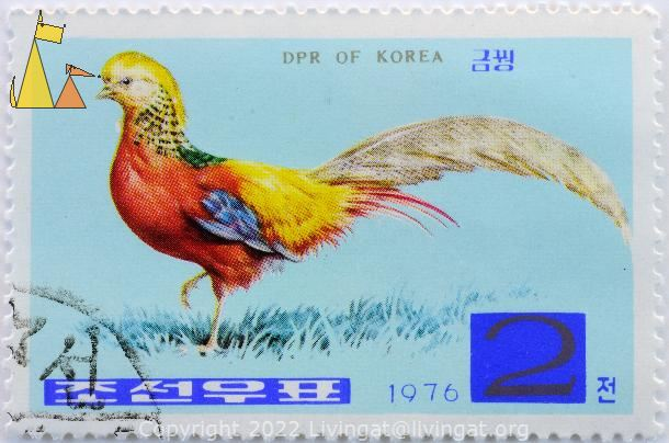 , DPR of Korea, North Korea, stamp, bird, 1976, 2, Chrysolophus pictus