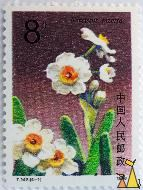 Daffodil, China, stamp, plant, flower, Narcissus tazetta, 8, 1990, T.147.(4-1)