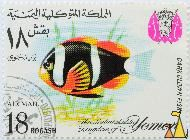 Dark Clown, Fish, The Mutawakalite Kingdom of Yemen, Yemen, stamp, coat of arms, fish, 18 Bogashi, Air Mail, Amphiprion chrysopterus