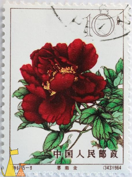Dark red rose, China, stamp, plant, flower, Rosa spp, rose, 61.15-8, 343, 1964, 10