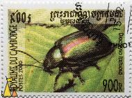 Dead-Nettle Leaf Beetle, Royaume du Cambodge, Cambodia, stamp, insect, beetle, Diochiysa fastuosa, Chrysolina fastuosa, 900 R, Postes, 2000, Dlochrysa fastuosa
