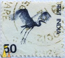 Demoiselle Crane, India, stamp, bird, crane, Anthropoides virgo, 50