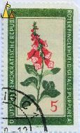 , Deutsche Demokratische Republik, DDR, Germany, stamp, plant, flower, Friebel, 5, Roter Fingerhut, Digitalis purpurea