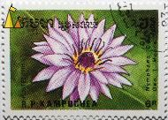 Director George T. Moore, R.P. Kampuchea, Cambodia, stamp, plant, flower, 1989, Postes, 6 R, Nymphaea spp, Director George T. Moore