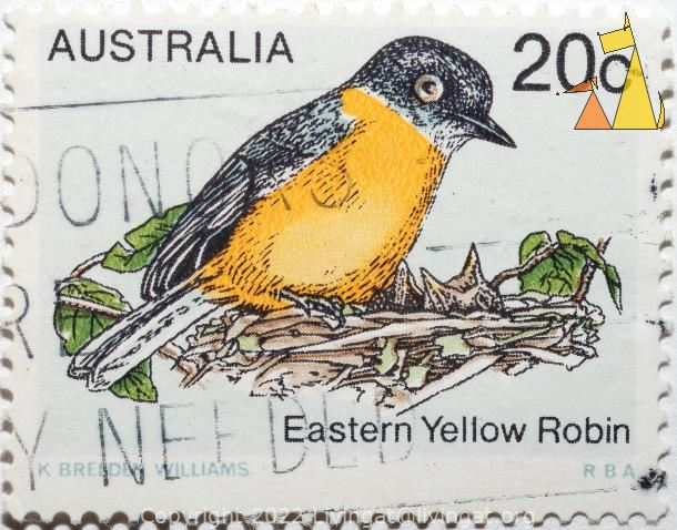 Eastern yellow robin, Australia, stamp, bird, K Breeden Williams, Eastern yellow robin, 20c, Eopsaltria australis, RBA
