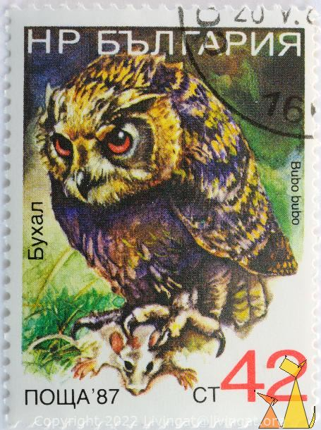 Egle-owl with Prey, Bulgaria, stamp, owl, bird, Bubo bubo, 42 Ct, prey, nowa, 87