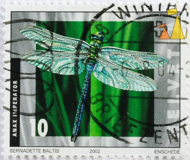 Emperor Dragonfly, Switzerland, stamp, insect, dragonfly, 2002, Enschede, Bernadette Balitis, 10, Anax imperator