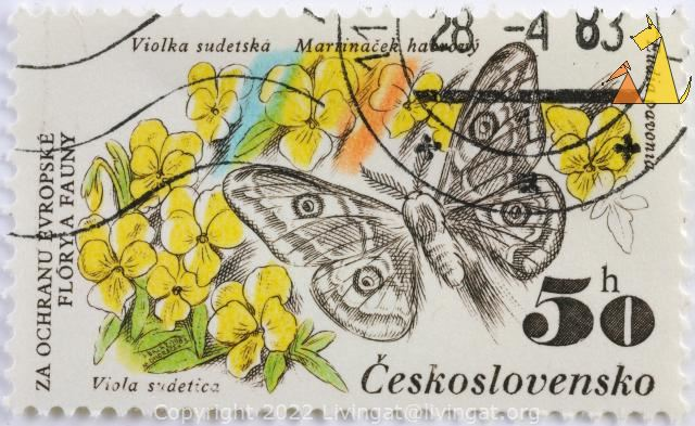Emperor Moth and Yellow Pansys, Ceskolovensko, Czechoslovakia, stamp, insect, butterfly, flower, 50 h, Za Orchanu Evropske Flory a Fauny, Violka studetska, Marrinack haorvy, 1983-04-28, Viola sudetica, Viola lutea, Eudia pavonia, Pavonia pavonia