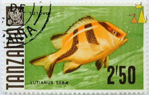 Emperor Red Snapper, Tanzania, stamp, coat of arms, fish, 2.50, Totovu, Lutianus sebae, Lutjanus sebae