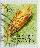 Episcopal miter, Kenya, stamp, shell, Mitra episcopalis, Episcopal miter, 10 c
