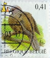 Eurasian Collared Dove, Belgique, Belgie, Belgium, stamp, bird, dove, 0.41, Turkse tortel, Tourteril Torque, Streptopelia decaocto