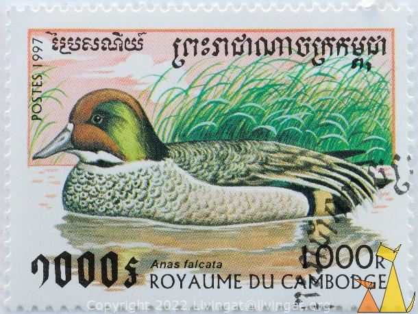 Falcated Duck, Royaume du Cambodge, Cambodia, stamp, bird, postes, 1997, 1000 R, Anas falcata