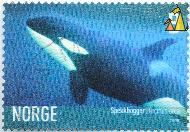 Female Killer Whale, Norge, Norway, stamp, mammal, 2005, Spekkhogger, Orcinus orca, B