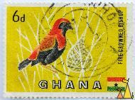 Fire Crowned Bishop, Ghana, stamp, bird, yellow, flag, 6 d, Euplectes hordeaceus