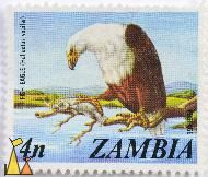 Fish Eagle, Zambia, stamp, bird, bird of prey, Postage, 4 n, Haliaeetus vocifer