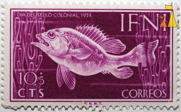 Fish, Ifni, stamp, fish, 10+5 cts, correos, Dia del sello colonial, 1953, F.N.M.T.