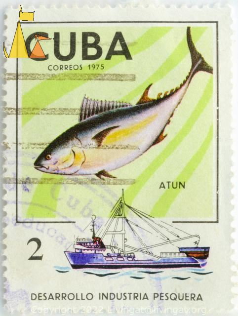Fishing for Bluefin Tuna, Cuba, stamp, fish, fishing, Correos, 1975, 2, Thunnus thynnus, ship, fishing boat, Atun