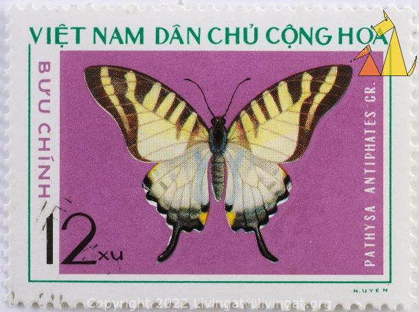 Five-bar Swordtail, Viet Nam, Vietnam, stamp, dan chu chong hoa, buu chinh, 12 xu, insect, butterfly, purple, N Uyen, Pathysa antiphates, Graphium antiphates