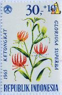 Flame lily, Republik Indonesia, Indonesia, stamp, plant, flower, 1965, Ketongkat, 30+10, Gloriosa superba