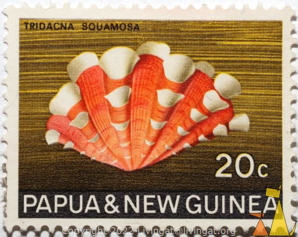 Fluted giant clam, Papua and New Guinea, Papua New Guinea, stamp, shell, Tridacna squamosa, 20 c