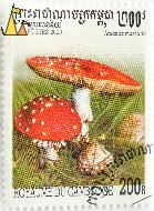 Fly agaric, Royaume du Cambodge, Cambodia, stamp, plant, mushroom, 200, 200 R, Postes, Amanita muscaria