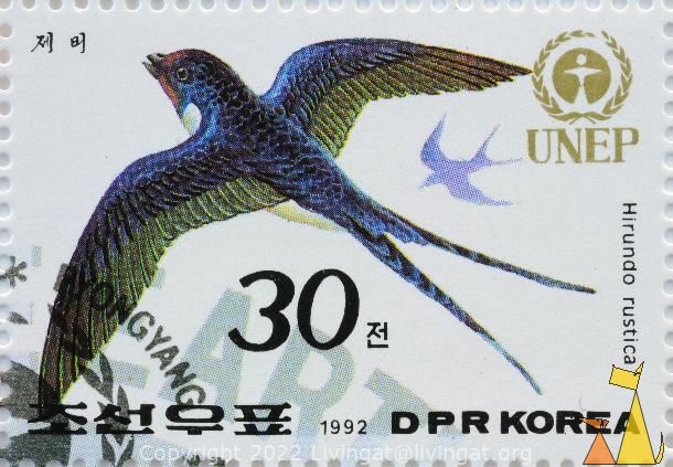 Flying Barn Swallow, DPR Korea, North Korea, stamp, UNEP, 1992, 30, bird, Hirundo rustica, flying