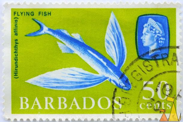 Flying Fish, Barbados, stamp, fish, green, Queen Elizabeth II, 50 cents, Hirundichthys affinis