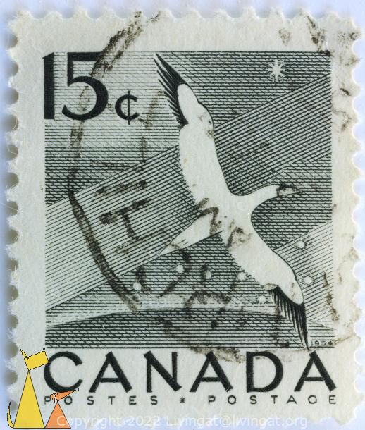 Flying Gannet, Canada, stamp, bird, 15 c, Postes, Postage, 1954, Back and White, Morus bassanus, star