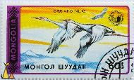 Flying Siberian Cranes, Mongolia, stamp, bird, Grus vipio pallas, flying, 1990, 60, Grus leucogeranus