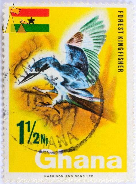 Forest Kingfisher, Ghana, stamp, bird, kingfisher, flag, 1½ Np, Harrison and Sons Ltd, Todiramphus macleayii