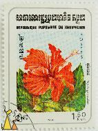 Four O'Clock Family, Republique Populaire du Kampuchea, Cambodia, stamp, plant, flower, Postes, 1.50 Riels, 1983, Nyctaginacées, Nyctaginaceae