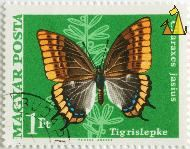 Foxy Emperor, Magyar, Hungary, stamp, insect, butterfly, Vertel Jozsef, Magyar, Posta, Charaxes jasius, Two-tailed Pasha, Foxy Emperor, Tigrislepke, 1Ft
