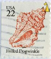 Frilled Dogwinkle, USA, stamp, shell, 22, Nucella lamellosa