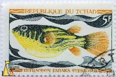 Globe fish, Republique du Tchad, Chad, stamp, fish, 5 F, Postes, Tetraodon fahaka strigosus, Haley, Tetraodon lineatus