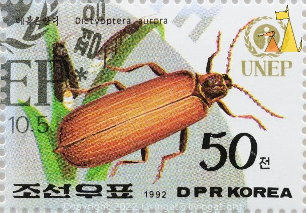 Golden Net-wing, DPR Korea, North Korea, stamp, UNEP, 1992, 50, insect, beetle, Dictyoptera aurora