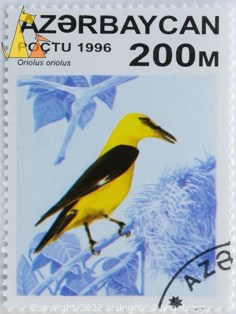 Golden on Blue, Azerbajdzjan, stamp, bird, poctu, 1996, 200 M, Oriolus oriolus