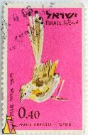 Graceful Prinia, Israel, stamp, air mail, bird, pink, Prinia gracilis, 0.40