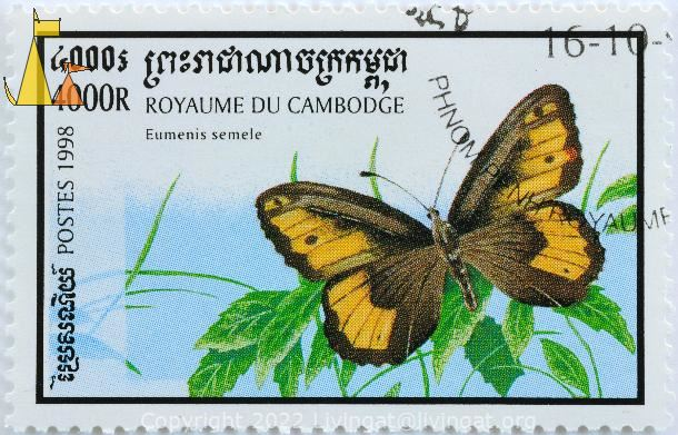 Grayling, Royaume du Cambodge, Cambodia, stamp, insect, butterfly, Postes, 1998, 4000 R, Eumenis semele, Hipparchia semele