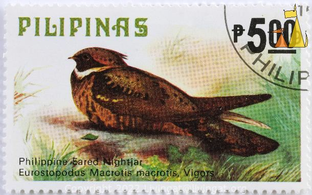 Great Eared-Nightjar, Pilipinas, Philippines, stamp, bird, 5.00 P, Philipinne Earded Nightjag, Eurostopodus Macrotis macrotis, Vigors